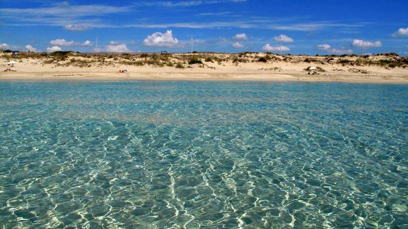 Triv nel Golfo di Taranto. Quante e qualisono?